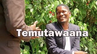 Katusekemu is a channel that brings you weekly comedy skits made in uganda and in luganda. produced by mk media uganda and directed by the best comedy ...