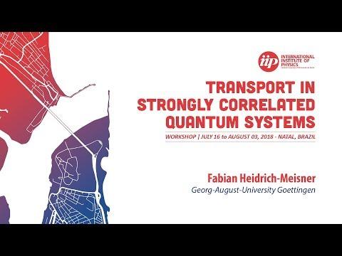 Transport properties of the 1D Fermi-Hubbard model - Fabian Heidrich-Meisner