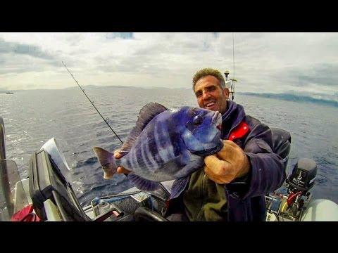 ψαρεμα -