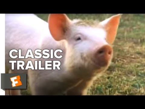 Babe Official Trailer #1 - Miriam Margolyes Movie (1995) HD