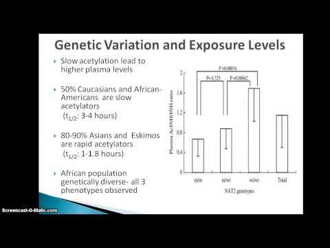 Pharmacogenetics of isoniazid