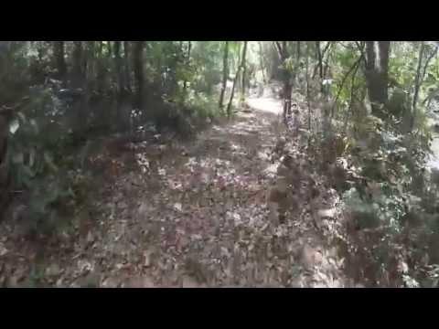 Trilha: Honório Bicalho - Macaco Molhado - Rio Acima