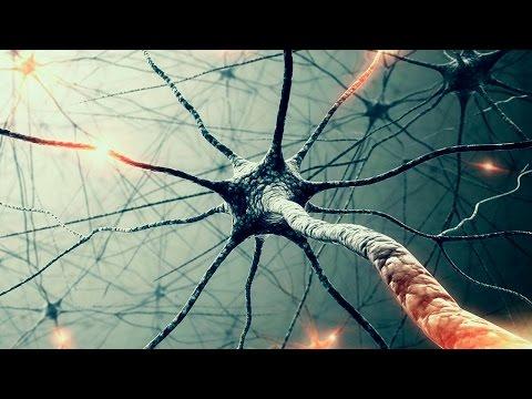 Массовая МАНИПУЛЯЦИЯ сознанием -  зеркальные нейроны (видео)