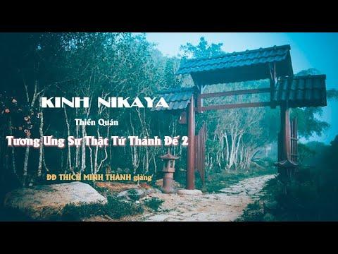 Kinh NIKAYA - Thiền Quán - Tương Ưng Sự Thật Tứ Thánh Đế 2