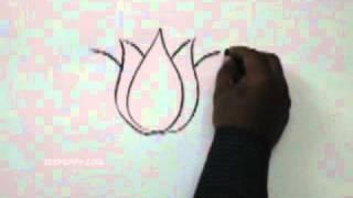 Видео: как просто нарисовать лотос карандашом