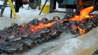 Video What Happens When Lava Meets Ice? MP3, 3GP, MP4, WEBM, AVI, FLV Januari 2019