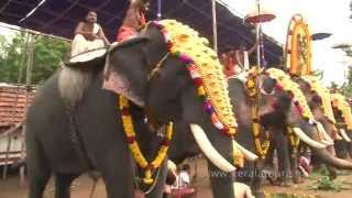 Click to view the video of Mudappallur Vela at Sree Azhikulangara Bhagavathi Temple