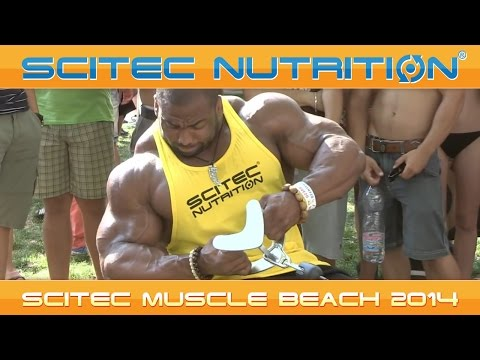 """muscle - Mindig is hatalmas érdeklődés övezte a Team Scitec tagok edzését. Hátha el lehet lesni egy-két trükköt és ezzel együtt feltölteni a motivációs """"készleteket""""...."""