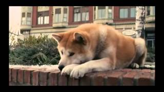 Nonton Hachiko A Dog's Story Music Video From Movie Film Subtitle Indonesia Streaming Movie Download