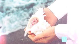 SEVENTEEN(세븐틴) - FIRST ALBUM LOVE&LETTER  HIGHLIGHT MEDLEY Video