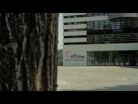 EFSA Building Exterior Broll