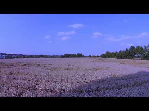 Altmittweida Drone Video