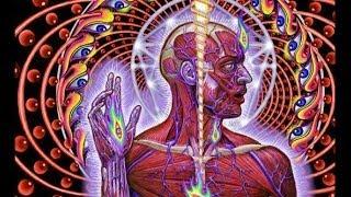 Мозг и галюциногены