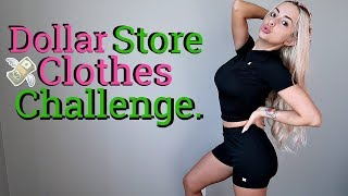 I ONLY wear DOLLAR STORE CLOTHES for 24 hours. by Piink Sparkles