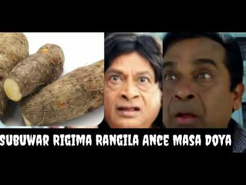 Sabuwar Rigima Ancewa Rangila Master DOYA Dariya Dole 🤣🤣😃 Daga Algaita Dub Studio Maza ku kalla