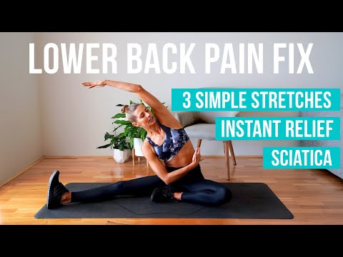 How to fix lower back pain | 3 MUST DO stretches (INSTANT RELIEF!)