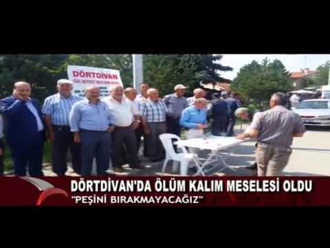 DÖRTDİVAN'A YÜKSEKOKUL İSTİYORLAR