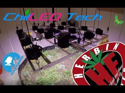 Indoor Garden Upgrades Cycle 3 No Till 4 (видео)