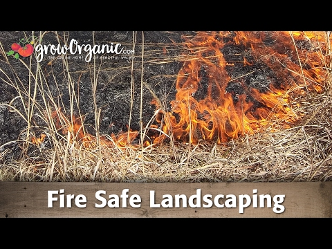 Fire Safe Landscaping