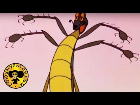 Тараканище | Русские сказки мультики для детей (Чуковский) (видео)