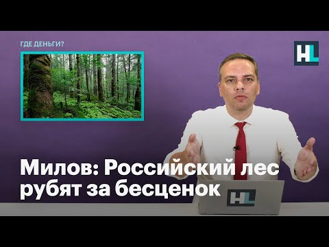 Российский лес рубят за бесценок