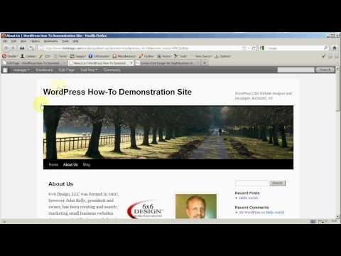 WordPress Beginner: Page Editor Details Part 3