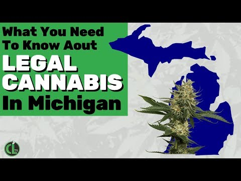 Michigan Legalized Cannabis: Here's What You Should Know