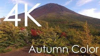 4K空撮 / 紅葉の富士山 奥庭御庭