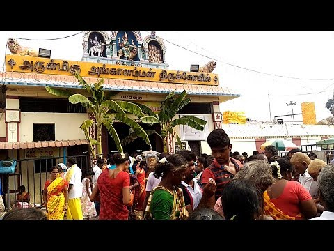 Video Melmalayanur Angala Parameswari Temple Amavasai Unjal Urchavam 15.05.2018 download in MP3, 3GP, MP4, WEBM, AVI, FLV January 2017