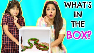 WHAT'S In The BOX Challenge || MyMissAnand -VS- ShrutiArjunAnand