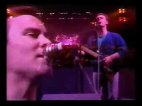 Video UB40 - Red Red Wine download in MP3, 3GP, MP4, WEBM, AVI, FLV January 2017