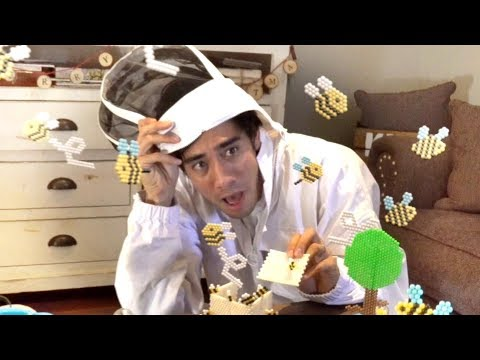 Funny images - Best Zach King Commercial Funny Magic Vines 2018  New Best Zach King Magic Tricks