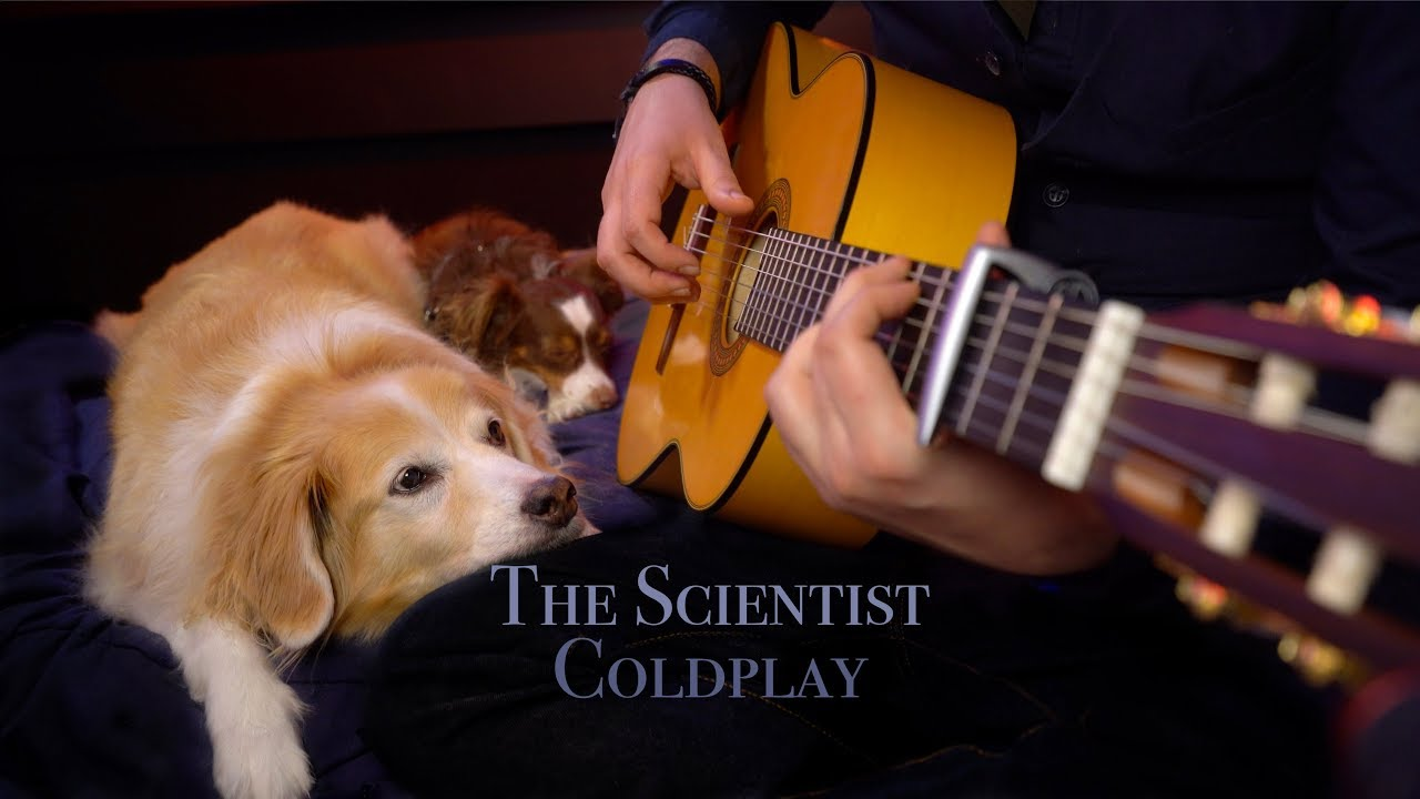 The Scientist – Coldplay (Fingerstyle Guitar)