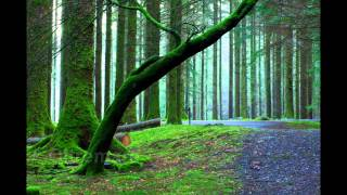 Top 10 Piano Songs by Ludovico Einaudi (Photography by Pianopod)