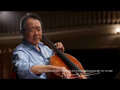 The Swam (Cello)