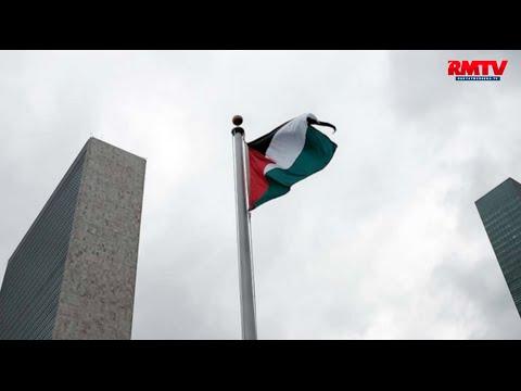 Sukacita Netizen Sambut Bendera Palestina