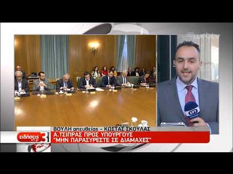 Α. Τσίπρας: Προστασία Α' κατοικίας και επιδότηση ενοικίου | 20/2/2019 | ΕΡΤ