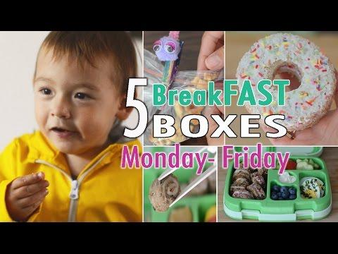 Kiddies Schulbrote Teil 3   BreakFAST Hacks   Lunchbox   mamiblock kiDchen