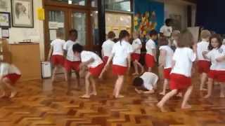 Book Capoeira Workshops for Schools - Primary School - Secondary School