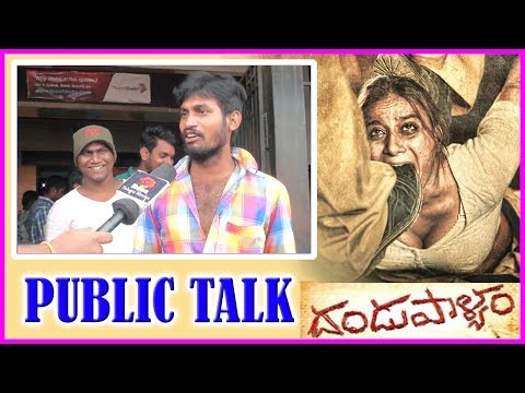 Dandupalyam 2 Movie Review/Public Talk | Telugu Movie 2017 | Sanjana | Pooja Gandhi