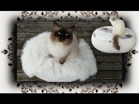 DIY 😻 Strick Ruheplatz Kissen für Katzen & Hunde | Knit restingplace pillow for cat & dog