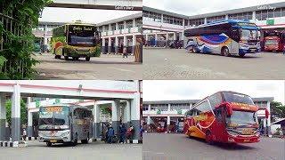 Video Hunting Bus Berangkat di Terminal Tersibuk Bungurasih/Purabaya Part 1 MP3, 3GP, MP4, WEBM, AVI, FLV Mei 2019