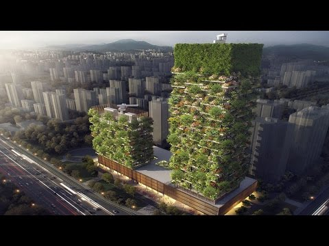 First Building Covered In Evergreen Trees Looks Absolutely Magical in world