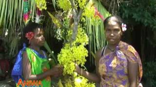 Vanuatu's showcase 7-min movie presenting the country and the highlights of tourism in the six provinces. This film should give...