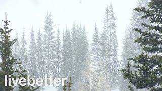 Download Lagu Sonidos Relajantes de Nevada para Dormir - Ruidos de la Naturaleza con Viento Calmante que da Sueño Mp3