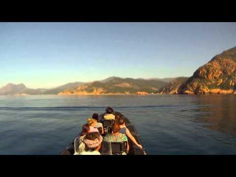 Wilde Fahrt mit dem Boot im Golfe de Porto
