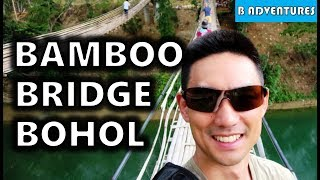 Bilar Philippines  city pictures gallery : Bohol Tour: Butterfly Habitat & Twin Hanging Bridge, Philippines S3, Travel Vlog #85