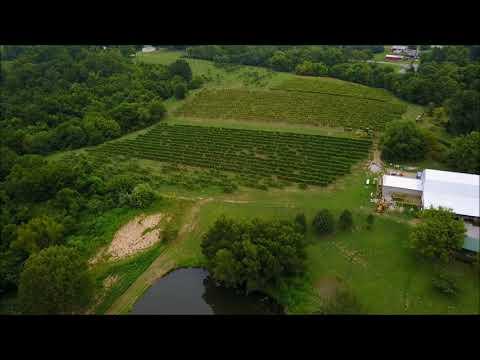 Hedman Vineyards & Winery For Sale