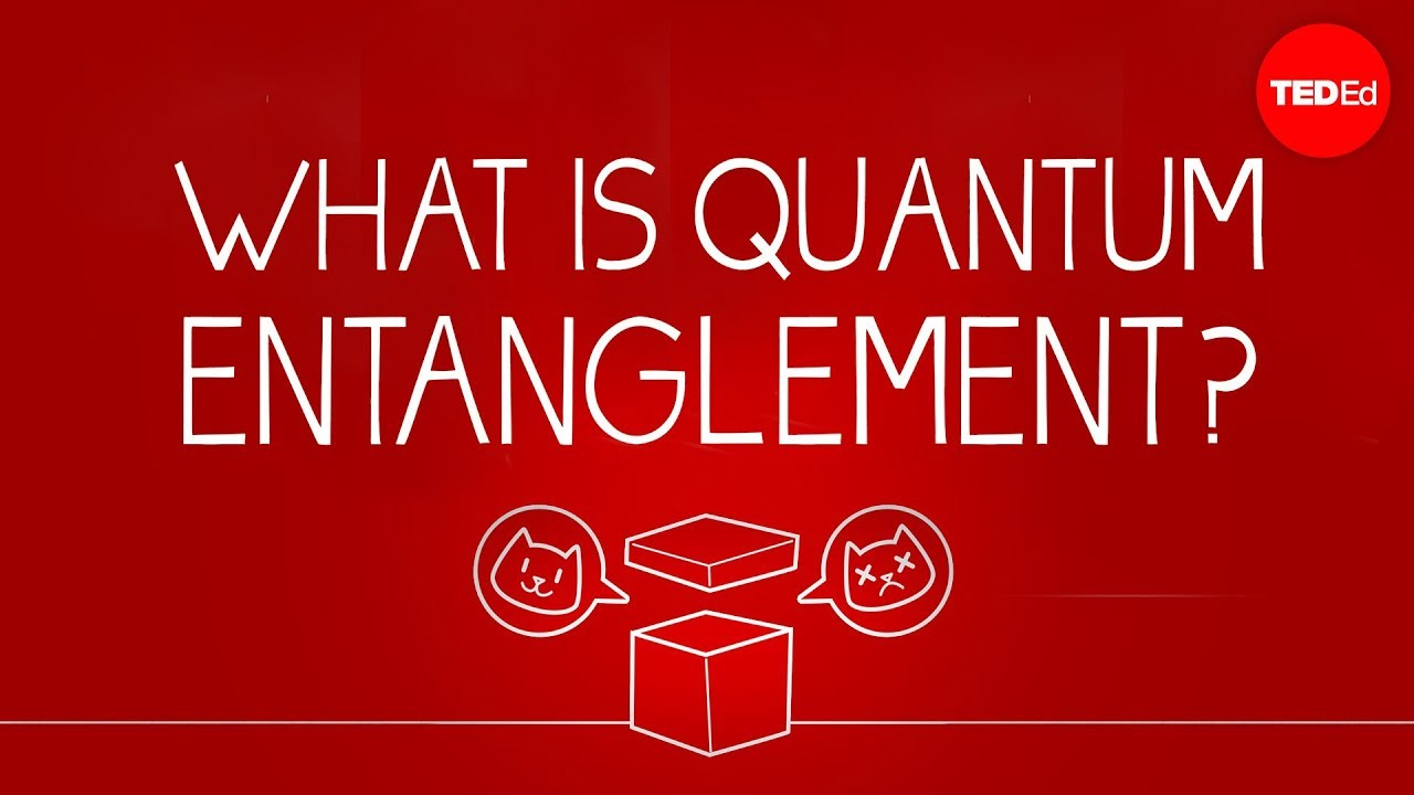 Video: What can Schrödinger's cat teach us about quantum mechanics?