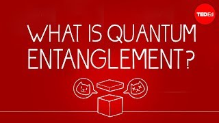 What can Schrödinger's cat teach us about quantum mechanics? (TED-Ed)